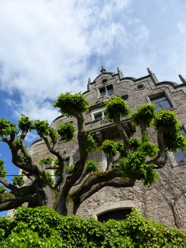 Altenstein Schloss (18)