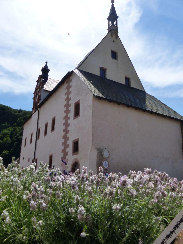 Leisnig Kloster Buch (10)