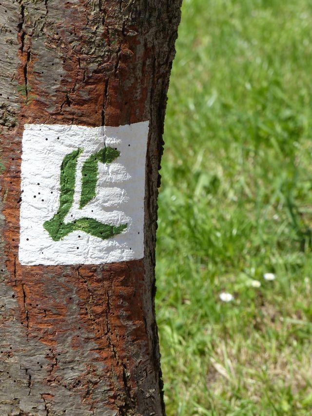 Lutherweg (4)
