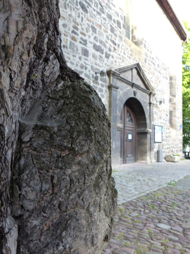 Arnstadt Bachkirche (5)